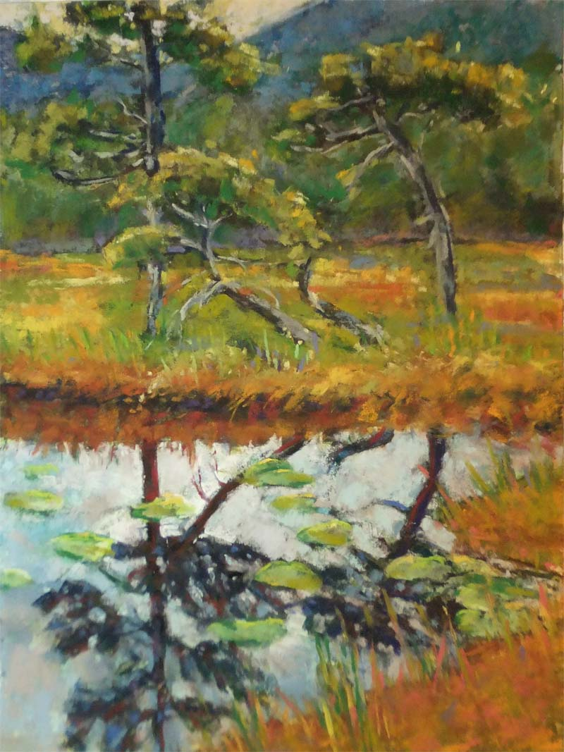 Muskeg Reflections 9 x 12 pastel